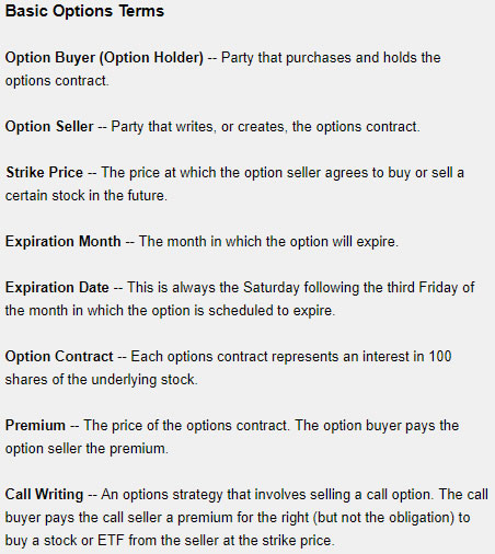 options terms